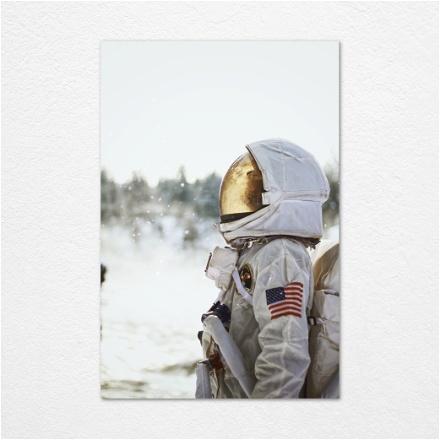 Snowy Astronaut