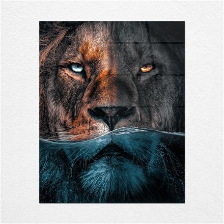 Lion Underwater