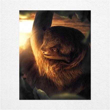 Swinging Sloth